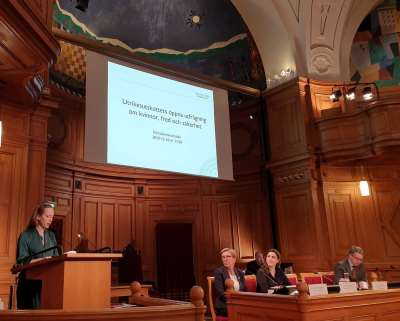 Louise Olsson Participates in Hearing at the Swedish Parliament