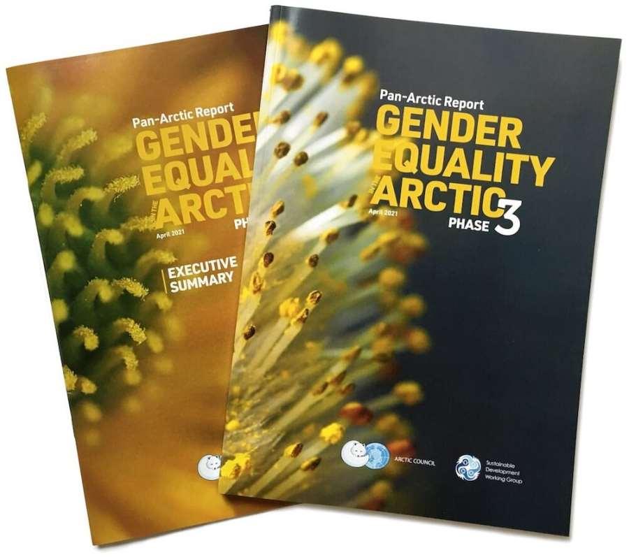 Gunhild Hoogensen Gjørv contributes to milestone report on Gender Equality in the Arctic