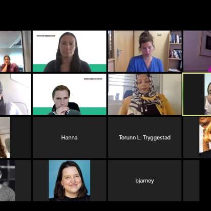 Annual meeting of Nordic Women Mediators successfully convened online