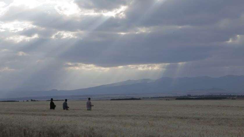 Documentary as a Tool for Peacebuilding?