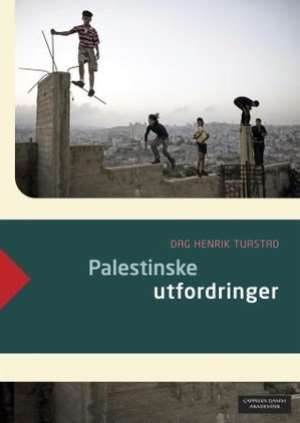 Palestinian Challenges in the Aftermath of the Gaza War