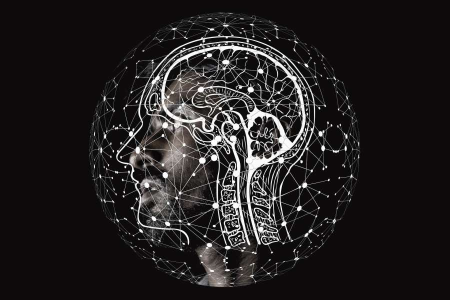 Digital Brains: Neuroscience, Philosophy and Law in Conversation