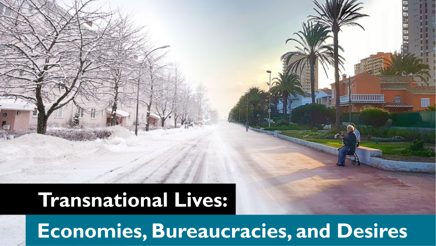 Call for papers - Transnational Lives: Economies, Bureaucracies, and Desires